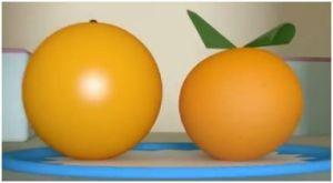 laquelle de ces deux oranges est bio ?