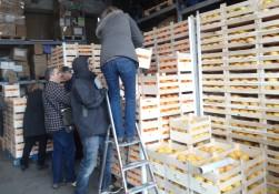 Distribution Janvier 016